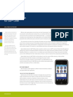 Sybase Mobile Sales SolutionBrief