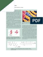 Lectura 7 - La química de la visión.pdf