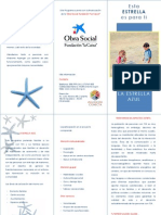 folleto estrella azul.pdf