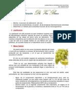 ELABORACIÓN DEL  VINO BLANCO INFORME2 (Reparado).docx