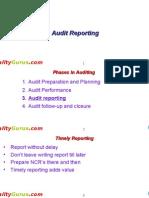 20868106 Internal Auditor Course Module 4 Audit Report