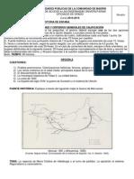 historia_2014-15.pdf