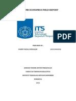 MARITIME ECONOMICS FIELD REPORT.docx
