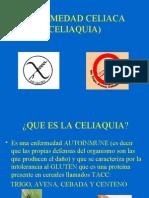 LeyCeliacaDiapositivas