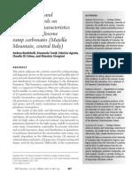 Rustichelli Et Al. (AAPG Bulletin)