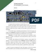 El Calendario y la Economía.doc