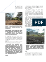 Case Study AGROFORESTRY