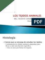 LOS TEJIDOS ANIMALES.pptx