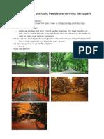 Voorbereidende Opdracht Beeldende Vorming Herfstpark