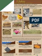 (Spanish) Fossil Poster v4.pdf