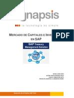 paper_tesoreriaextendidaensap_rfrigerio.pdf