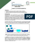 Conozcamos la actividad enzimática (11).pdf