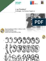 Explora2014_LosRios_Cosmelli.pdf