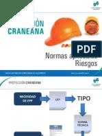 proteccion_craneana.pdf