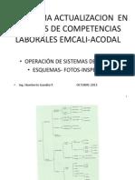 2-SEMINARIO ACTUALIZACION  OCTUBRE 2013 esquemas-fotos-inspección.pdf