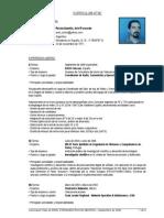 CV Rocha Amoros.pdf