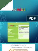 PROMEXICO.pdf