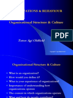 Organisational Structure  Culture.ppt