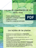 09-Formas_de_organizacion_de_los_seres_vivos.pdf