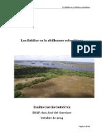 Los Baldíos en la altillanura colombiana EGG.pdf