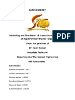 Minor Report.pdf