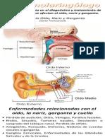 Lamina Otorrinolaringólogo.docx