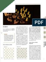 Enciclopedia La pasión del ajedrez - Curso Nivel Basico.pdf