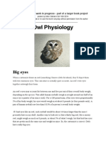 Owl Physiology, a chapter for book in progress
