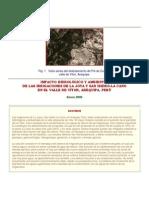 impacto hidrologico ambiental valle joya.docx