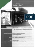 proyecto vinculacion.pdf