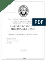 Seguridad en el laboratorio.docx
