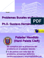 Problemas Bucales