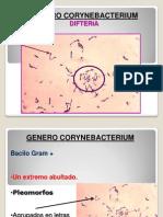 Nro 9 B. Corynebacterium.pptx