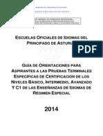 2014GuiaAspirantesC1Incluido.pdf