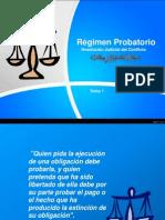 Regimen Probatorio.ppt