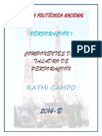 Raymi Campo.docx