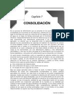 dav - consolidacion.doc