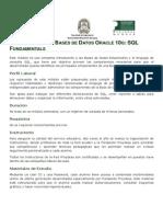 Administrador de Bases de Datos Oracle 10g dba1.pdf