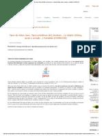 Tipos de datos Java. Tipos primitivos (int, boolean...) y objeto (String, array o arreglo...pdf