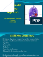 Sistema Digestivo 2012.pptx