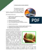 EL MEDIO AMBIENTE.pdf