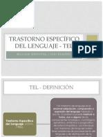 SEMINARIO TEL.pptx