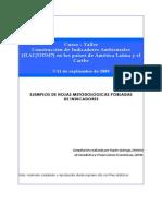 Ejemplos Fichas de Indicadores.pdf