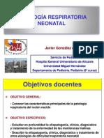 patologarespiratorianeonatal.ppt