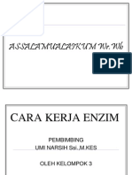 Enzim(ppt).ppt