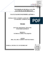 EXTRACCIONYPURIFICACIONDECOLORANTESAPARTIRDELACHIOTEannato.pdf