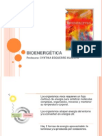 14.BIOENERGÉTICA.pptx