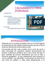 ALOJAMIENTO DE GANADO PORCINO.pptx