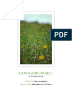 Dandelion Project