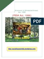 Pesa Act 1996